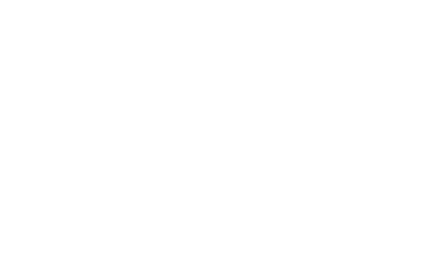 Elvis Goes There